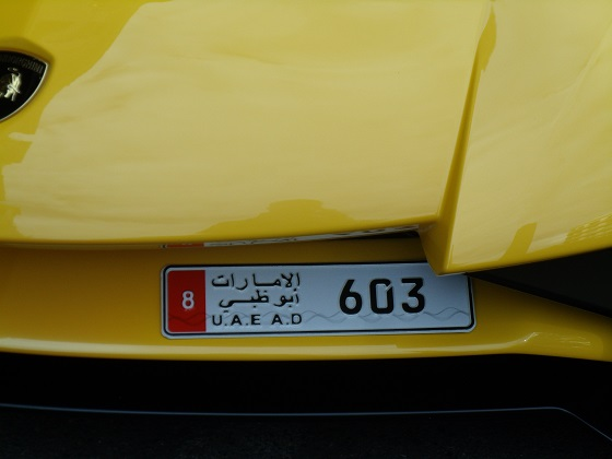 united arab emirates abu dhabi license plate